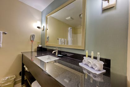 Bathroom | Holiday Inn Express Chillicothe East