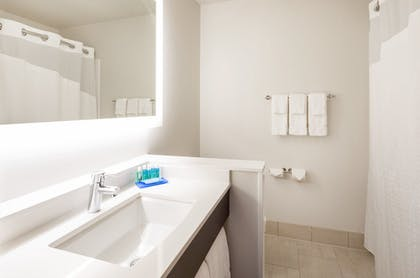 Bathroom | Holiday Inn Express Hotel & Suites Downtown Minneapolis