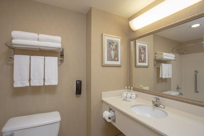 In-Room Amenity | Holiday Inn Express Hotel & Suites Phoenix Downtown-Ballpark