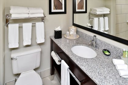 Bathroom | Holiday Inn Express Hotel & Suites Tampa-Rocky Point Island