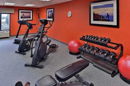 Fitness Facility | Holiday Inn Express Hotel & Suites Tampa-Rocky Point Island