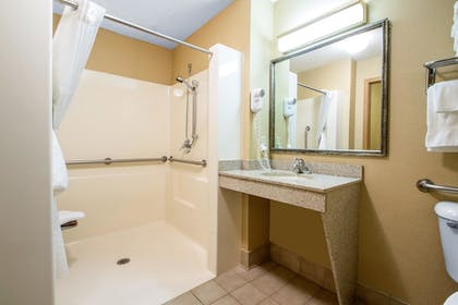 Bathroom | Comfort Suites Wisconsin Dells Area