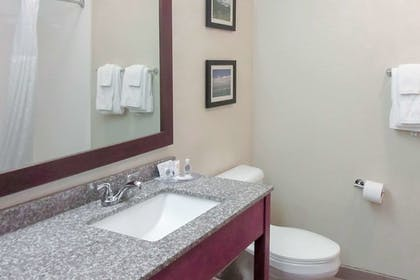 Bathroom | Comfort Inn & Suites