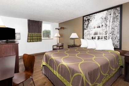 Room | Super 8 by Wyndham Missoula/Brooks Street