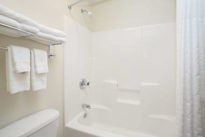 Bathroom | AmericInn by Wyndham Mount Pleasant