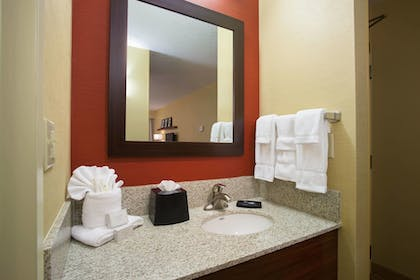 Bathroom | Courtyard by Marriott Orlando Downtown