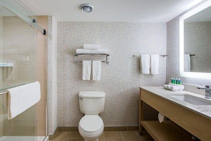Bathroom | Holiday Inn Express & Suites Omaha - 120th and Maple