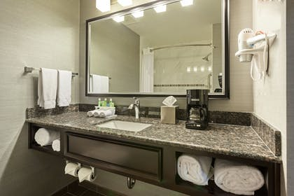 Bathroom | Holiday Inn Express Hotel & Suites Rapid City
