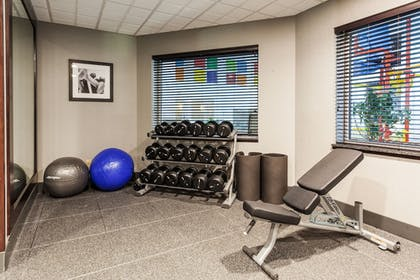 Gym | Holiday Inn Express Hotel & Suites Rapid City