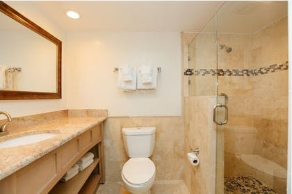 Bathroom | Tween Waters Island Resort & Spa