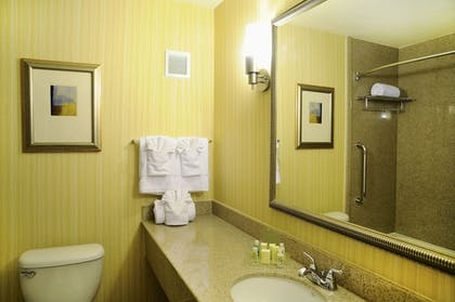 Bathroom | Holiday Inn Richmond South - City Gateway