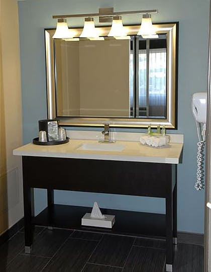In-Room Amenity | Holiday Inn Express Boise - University Area