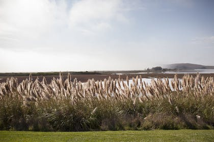 View from Property | Bodega Bay Lodge