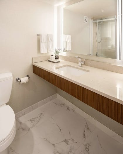 Bathroom | The Rushmore Hotel & Suites, BW Premier Collection
