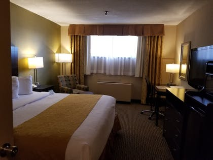 Guestroom | Best Western Watertown Fort Drum