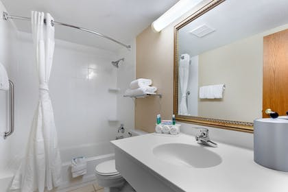 Bathroom | Holiday Inn Express Chicago-Downers Grove
