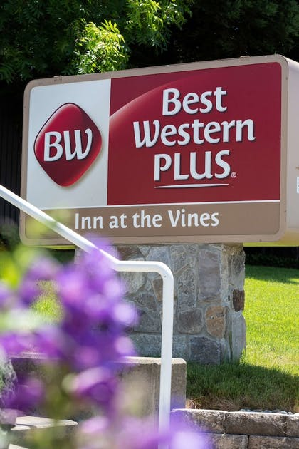 Exterior | Best Western Plus Inn At The Vines