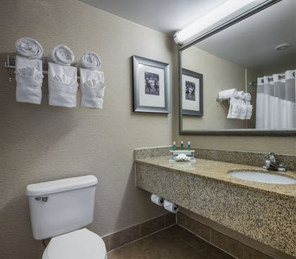 Bathroom | Holiday Inn Express Hotel and Suites Laurel