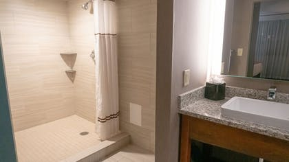 Bathroom Shower | Best Western Plus Capitol Ridge