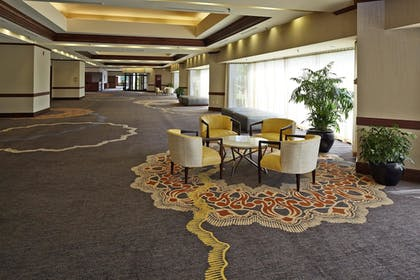 Meeting Facility | Hilton North Raleigh/Midtown