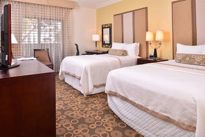 Room | Best Western Corte Madera Inn