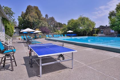 Outdoor Pool | Best Western Corte Madera Inn