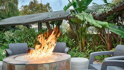 Terrace/Patio | Best Western Corte Madera Inn