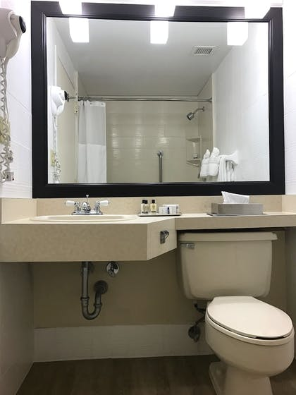 Bathroom | Regency Hotel Miami