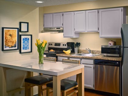 In-Room Kitchen | Sonesta ES Suites South Brunswick - Princeton