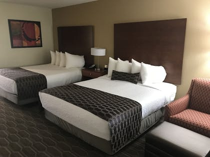 Guestroom | Best Western Plus Milwaukee Airport Hotel & Conference Ctr