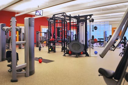Sports Facility | Hilton Chicago