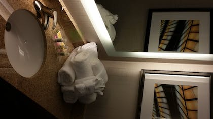 | Suite, 1 King Bed, Non Smoking | Holiday Inn Greenville