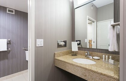 Bathroom | Courtyard by Marriott Rochester Brighton