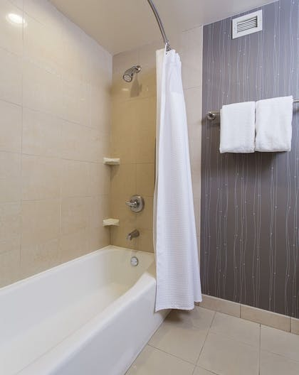 Bathroom Shower | Courtyard by Marriott Rochester Brighton