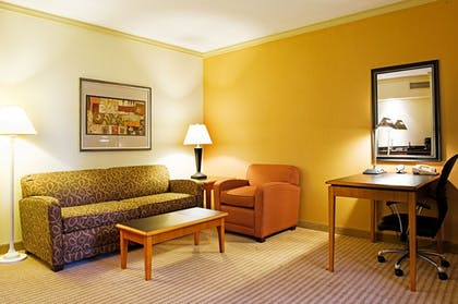 Living Area   Holiday Inn Express & Suites Irving Dfw Airport North