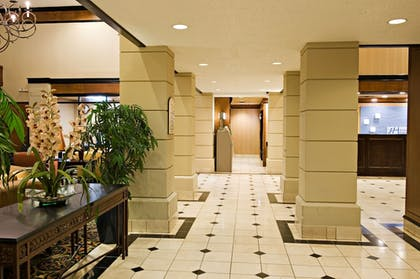 Hallway   Holiday Inn Express & Suites Irving Dfw Airport North