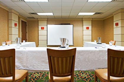 Meeting Facility   Holiday Inn Express & Suites Irving Dfw Airport North