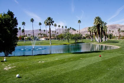Golf | Shadow Mountain Resort