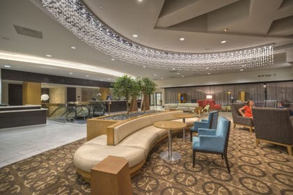 Lobby Sitting Area | DoubleTree by Hilton Hotel Washington DC - Crystal City