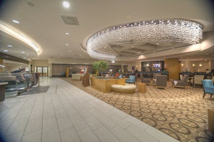 Lobby | DoubleTree by Hilton Hotel Washington DC - Crystal City