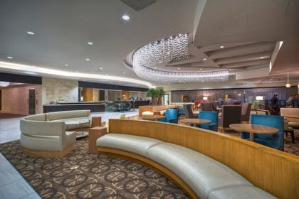 Reception | DoubleTree by Hilton Hotel Washington DC - Crystal City