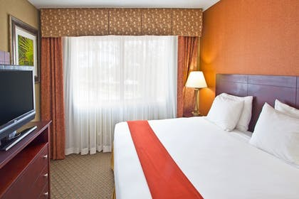 Guestroom | Holiday Inn Express Clearwater East - Icot Center