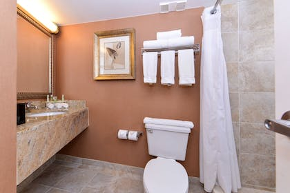 Bathroom | Holiday Inn Express Clearwater East - Icot Center