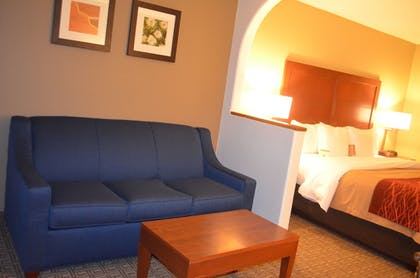 Living Area | Comfort Inn Santa Fe