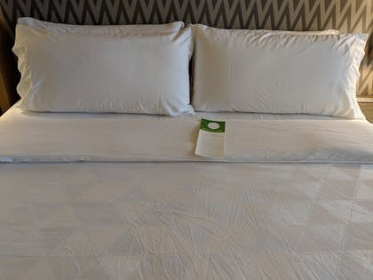 Guestroom | Holiday Inn Champaign