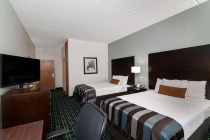 Room   Wingate by Wyndham Fletcher at Asheville Airport