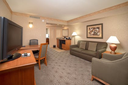 Living Area | Embassy Suites by Hilton Columbia Greystone