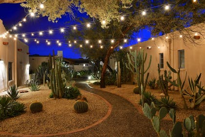 Property Grounds | Lodge on the Desert