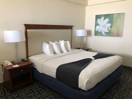 Room   Best Western Cocoa Beach Hotel & Suites