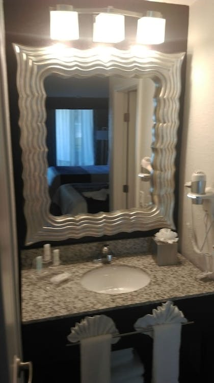 Bathroom Sink |  | Clarion Inn & Suites Across From Universal Orlando Resort